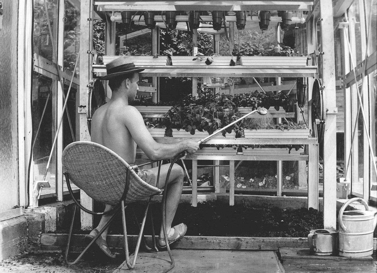 1964-Ruthnerturm Gärtner
