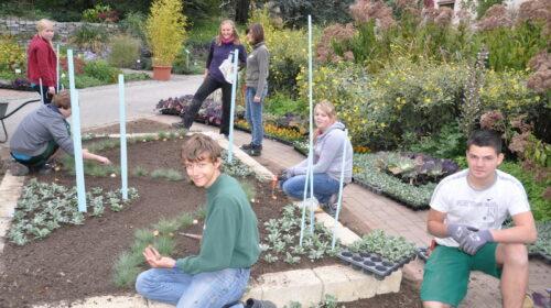 Gartengestaltung (3)_Bildgröße ändern