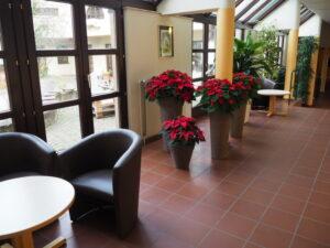 Bunte Blumen und Sitzmöglichkeiten an jeder Ecke
