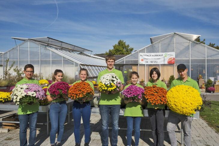 ... eine große Auswahl an Zierpflanzen, Gemüsejungpflanzen, Bäumen und Sträuchern, Obst
