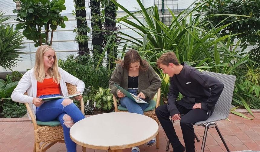 Lernen im Greenhhouse
