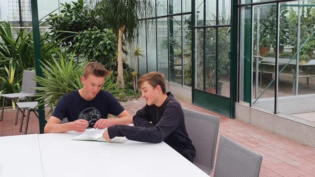Lernen im Greenhouse